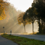 朝のだるさは日光と少しの食事でスッキリ解消できる。~自律神経の整え方①