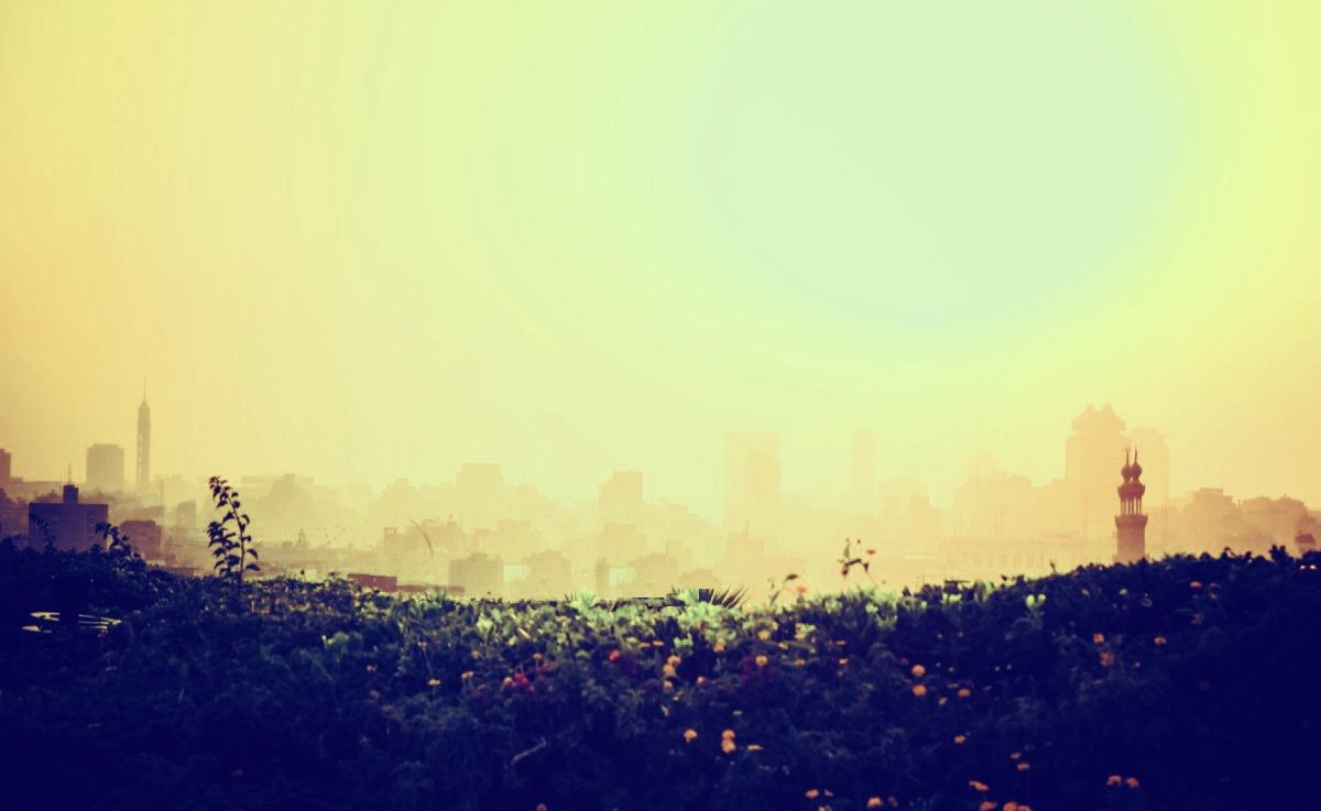 過敏性腸症候群とストレス【大阪の心斎橋や本町で自律神経失調症やパニック障害の鍼灸と整体ならランプココ】