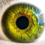 眼精疲労が良くなる方法【大阪の心斎橋の鍼灸と整体~自律神経失調症や不眠症も対応】
